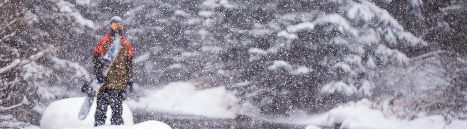 Snowboardforbundets bildegalleri cover image