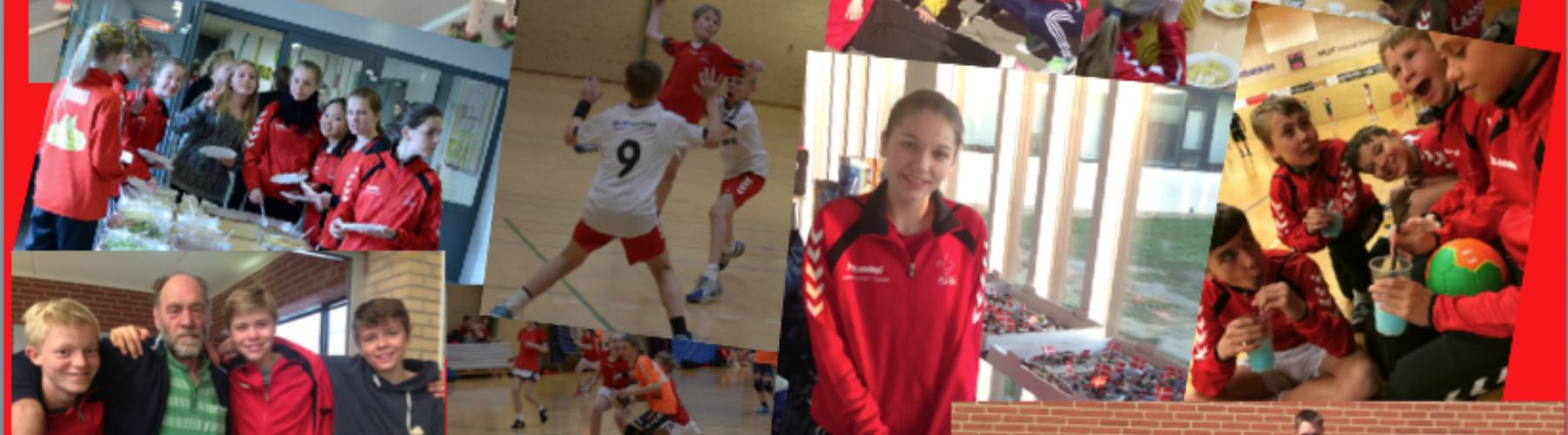 Stige Håndboldklub cover image