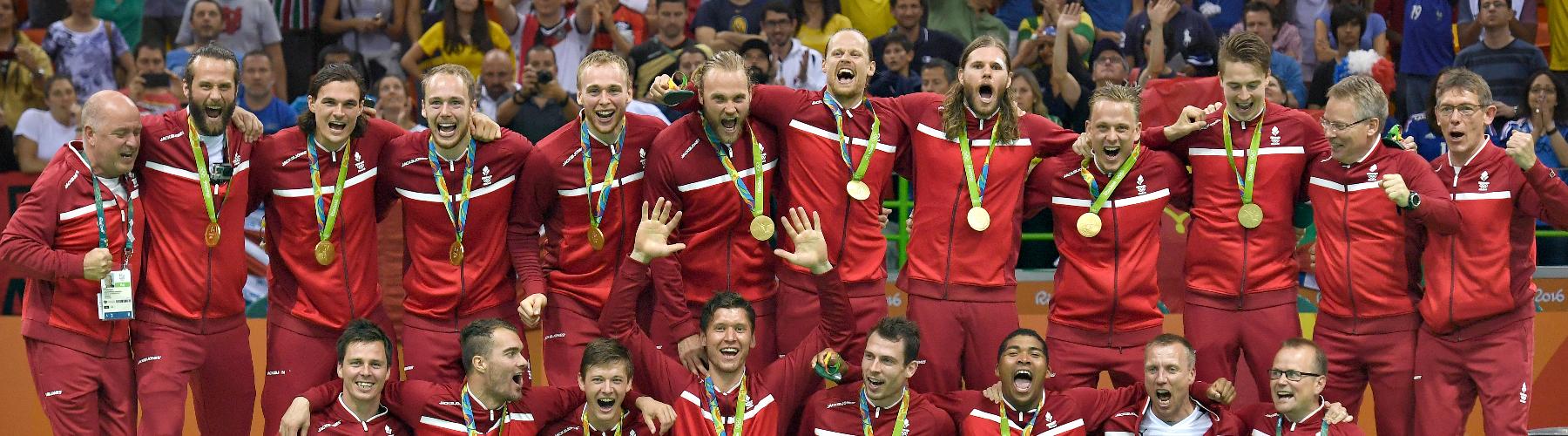 Dansk Håndbold Forbund cover image