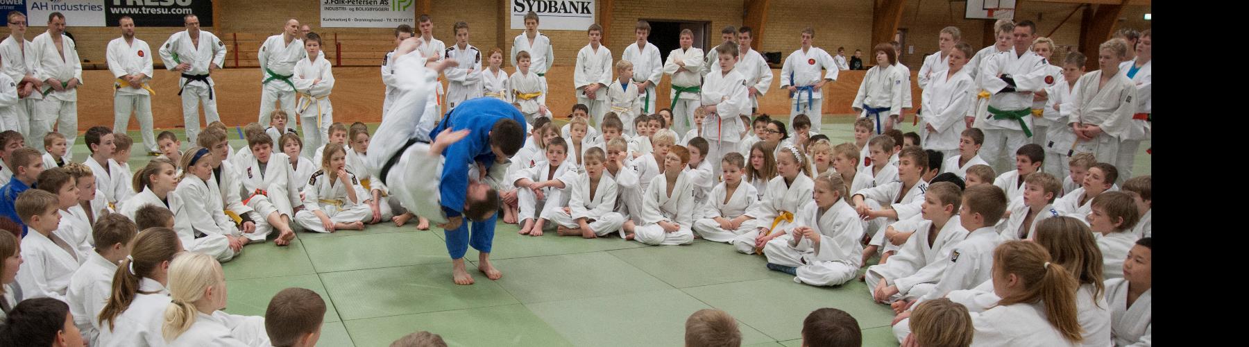 Dansk Judo og Ju-Jitsu Union cover image