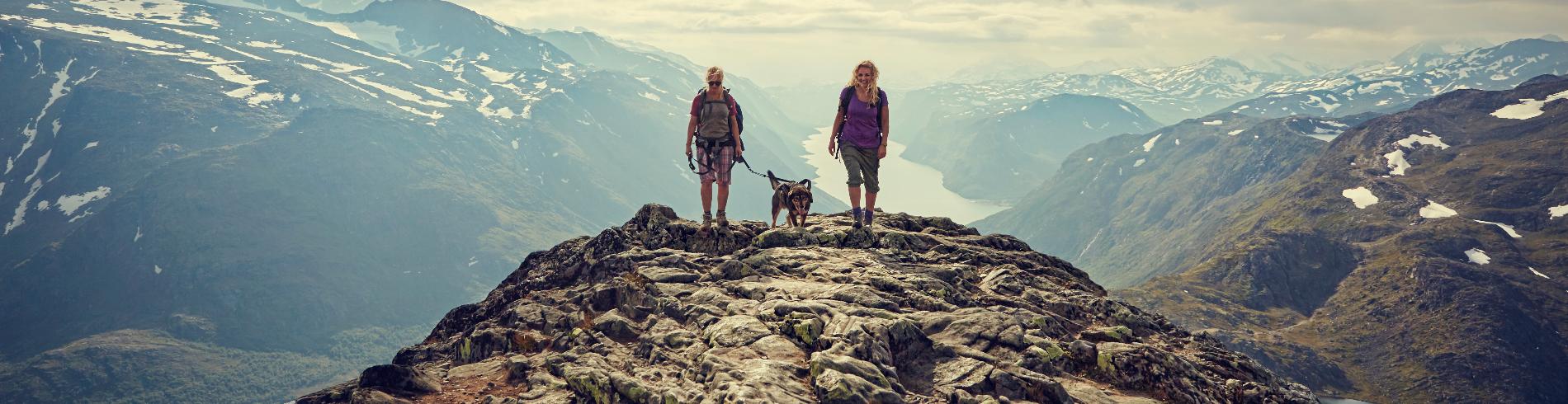 Nasjonalparkriket Reiseliv AS cover image