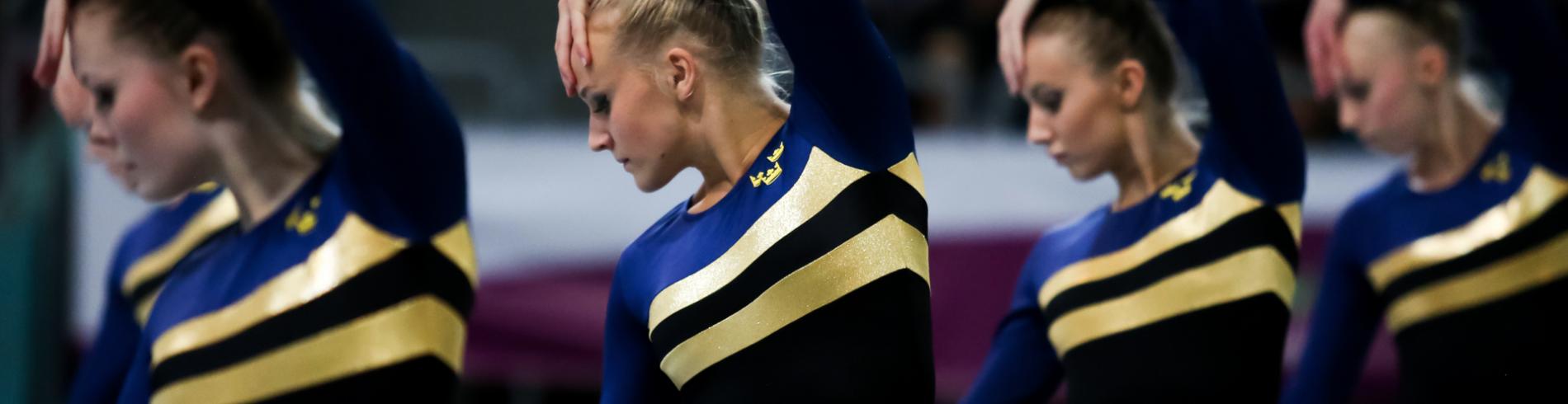 Gymnastikförbundets officiella bildbank  cover image