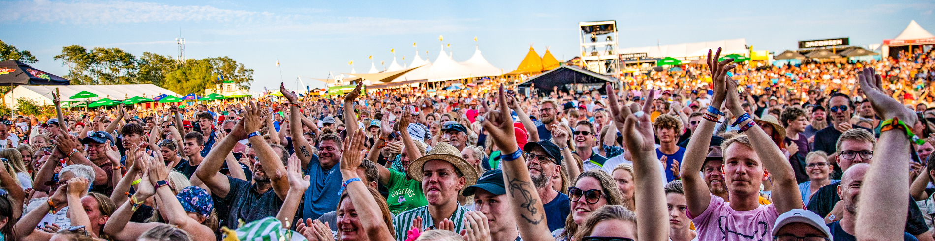 Langelandsfestival cover image