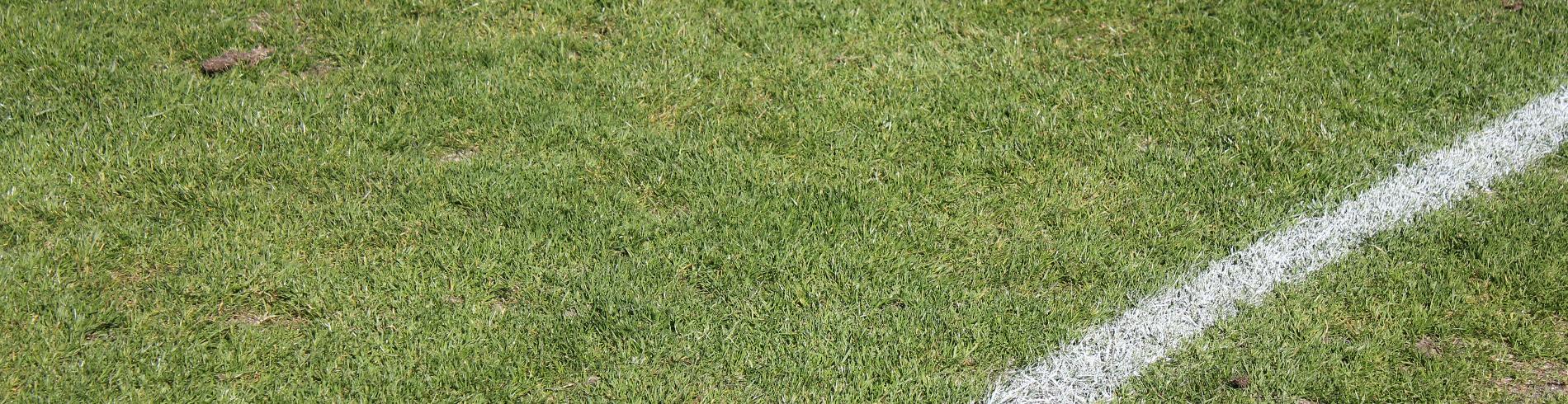 Landesfußballverband Mecklenburg-Vorpommern cover image