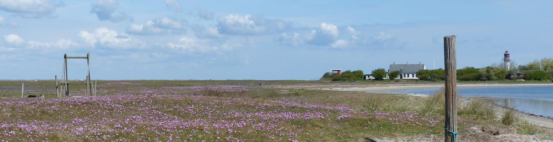 Naturpark Nakskov Fjord cover image
