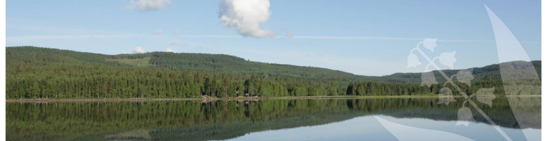 Lunner kommune cover image