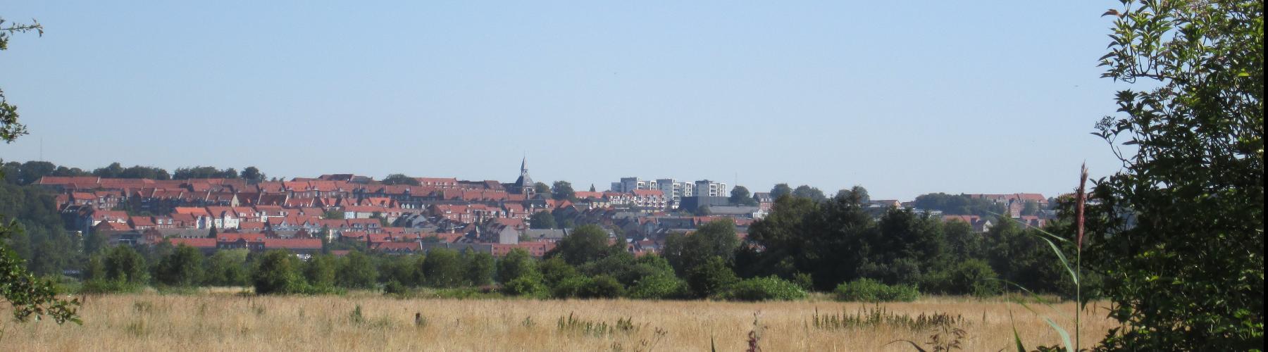 Randers Kommune cover image