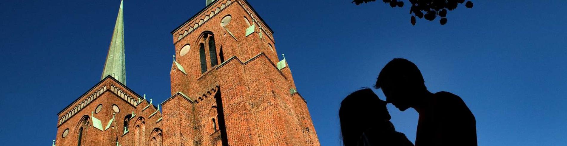 Roskilde Kommunes mediegalleri cover image