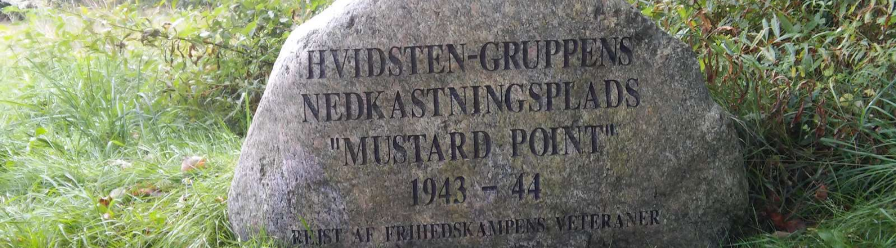 Vilfred Christian Pedersen cover image