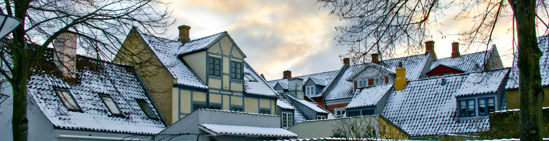 VisitOdense cover image