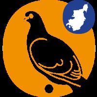 Direktører og Chefer logo