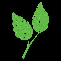GrowDesign Media logo