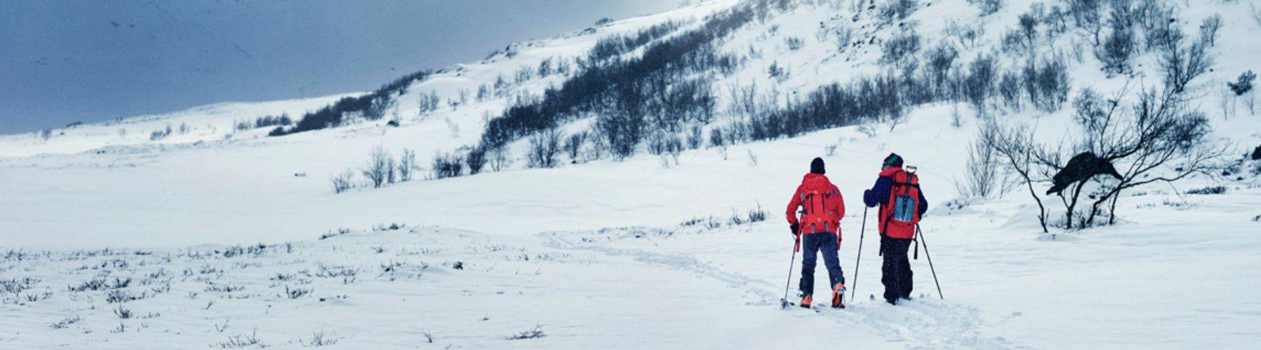 Norges nasjonalparker cover image