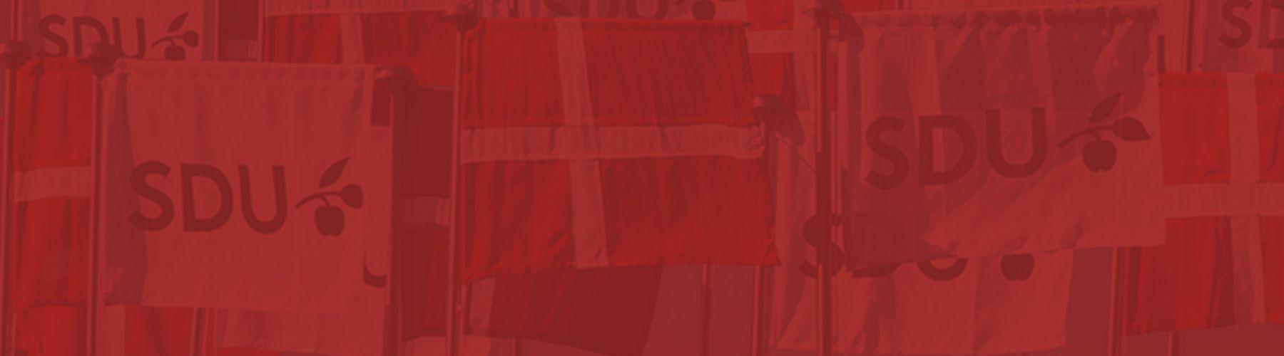 SDU billeder cover image