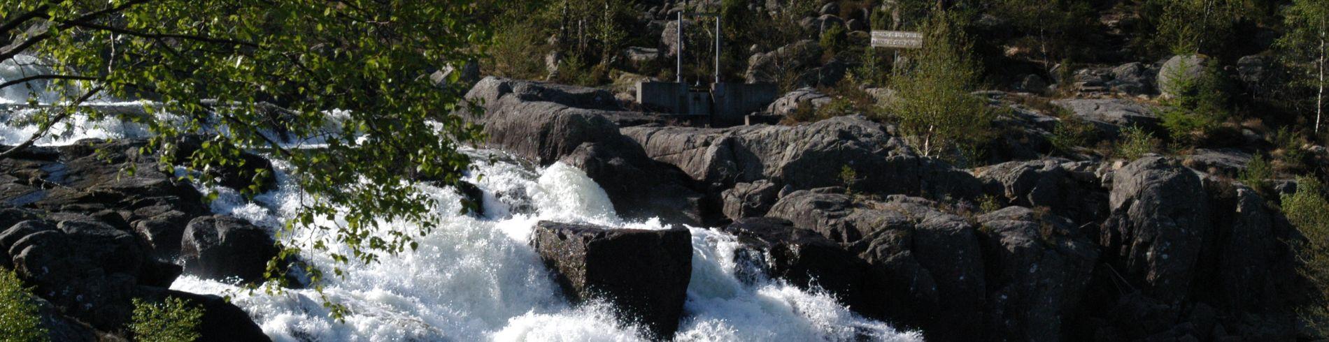 Strand kommune cover image