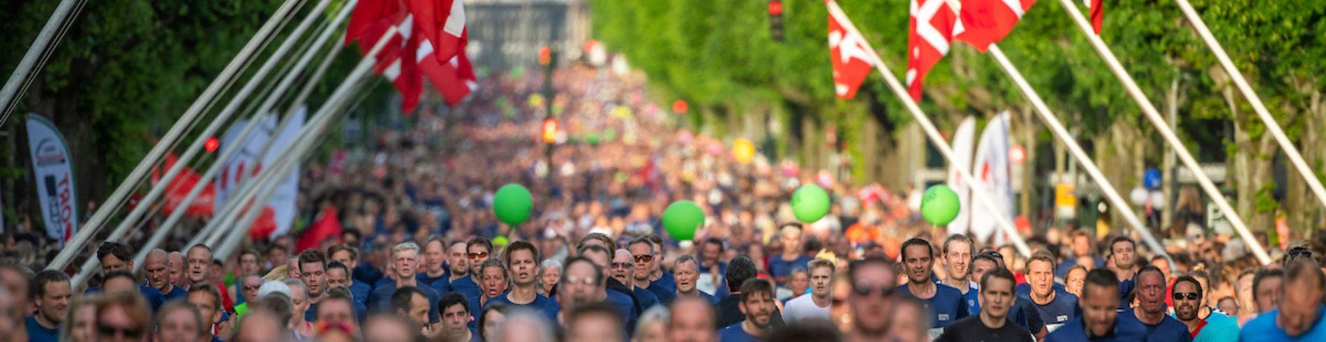 Royal Run billedgalleri cover image